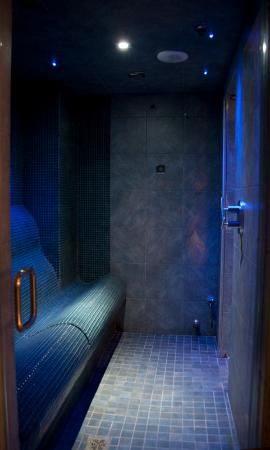 Steam room located in the private Oasis room. - Picture of Baltimore ...
