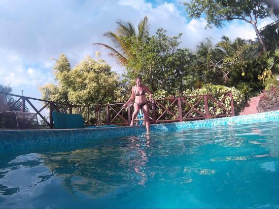Nature's Paradise: pool