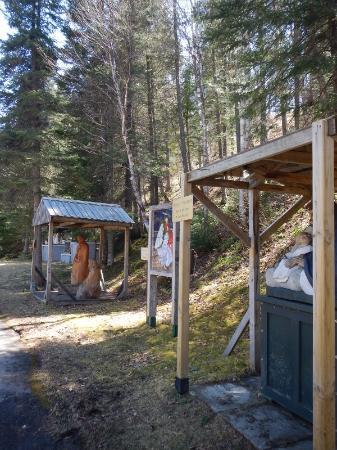 Tours Aventure Fjord et Monde Day Tours : Nativity Scences