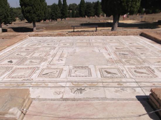 Ensemble Archéologique d'Itàlica : Impreionante Mosaico en la casa de los Pajaros