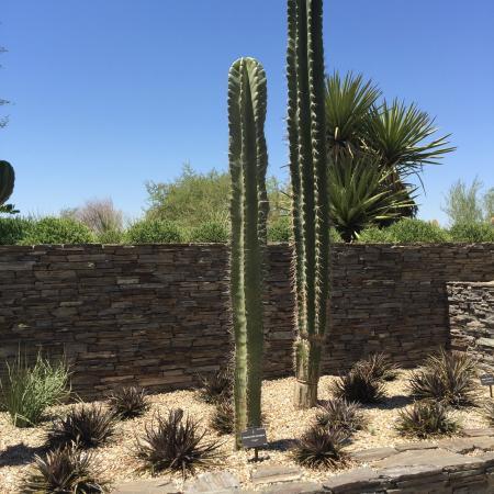 One Day In Phoenix Travel Guide On Tripadvisor