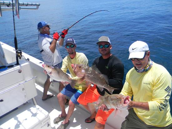 This red grouper is bigger than it looks tasty picture for Madeira beach fishing charters