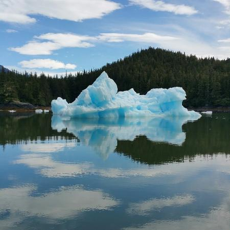 Whale Song Cruises : Surreal blue iceberg while cruising to leconte glacier