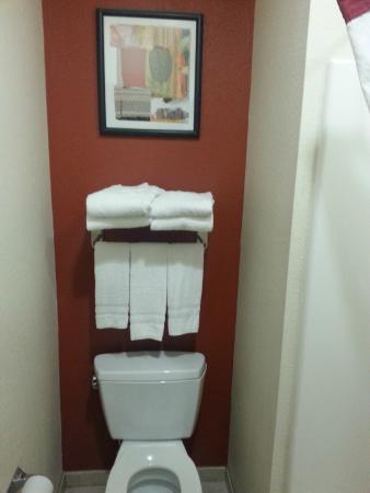 Red Roof Inn Panama City: toilet area