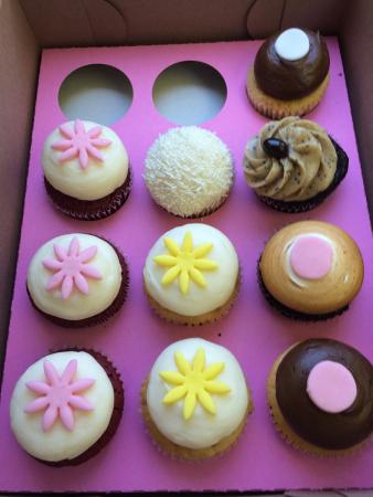 Kara's Cupcakes: photo1.jpg