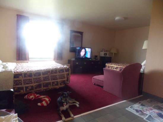 Americas Best Value Inn Brandenburg: Wonderful room for My Service Dog and Me.