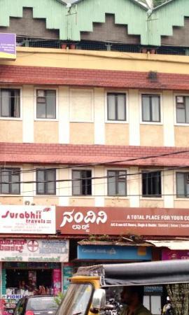 Nandini Palace