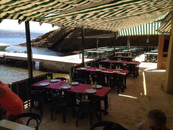 Seynerolles photo de ile verte la ciotat tripadvisor - Restaurant ile verte la ciotat ...
