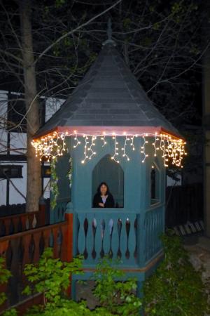 Castle Wood Theme Cottages