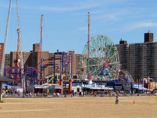 Coney Island Hot Dog Roller Reviews