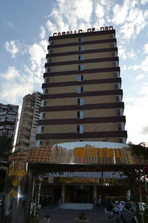 Hotel Caballo de Oro: Entrada