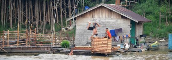 Palangkaraya, Endonezya: Anak-anak kecil sedang aktifitas mandi di pinggiran sungai kahayan dengan aksi salto di atas air