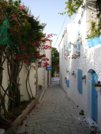 Villa Kynthia: The alleyway