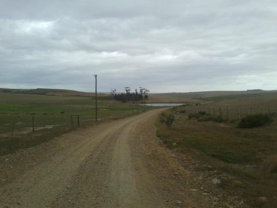 Anna's Farm: Road to the Farm House