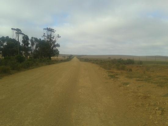 Anna's Farm: Pleasant spaciousness
