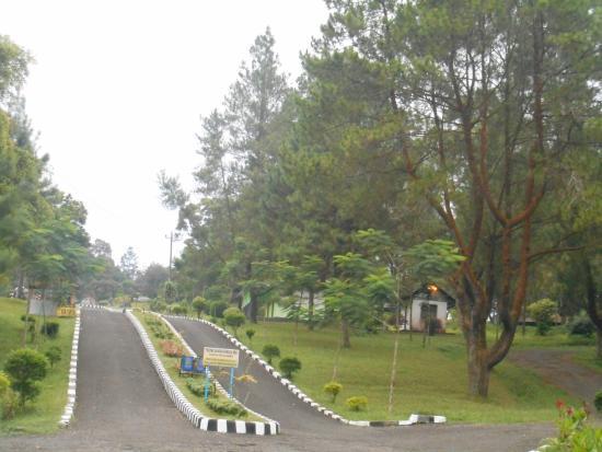Gua Lawa