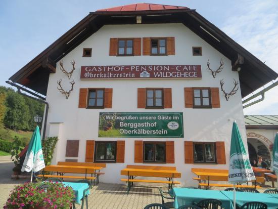 Berggasthof & Pension Oberkalberstein