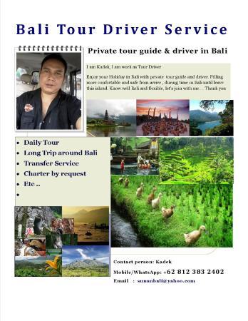 Bali Tour Driver Service