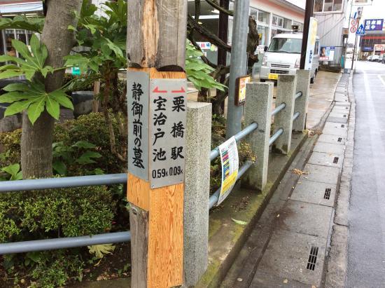 Shizukagozen Grave