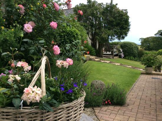 Strete, UK: Garden