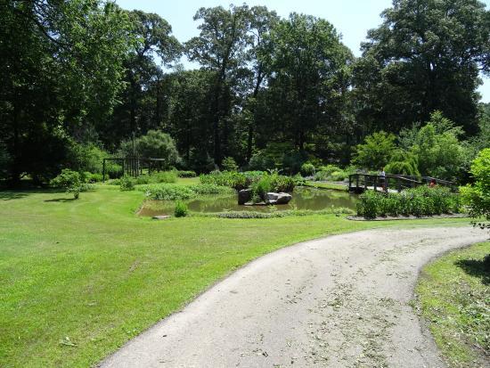 Pond At Back Of Garden Picture Of Memphis Botanic Garden Memphis Tripadvisor