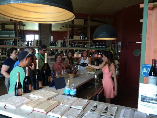 Buonamico Tenuta : Et par indtryk for vores dag på Buonamico