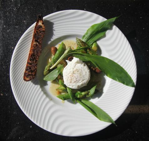 risotto de gamabs à l'estragon - picture of cuisine coup de coeur ... - Cours Cuisine Viroflay