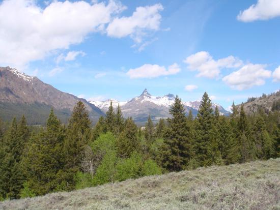 Ponderosa Campground: Chief Joseph scenic highway
