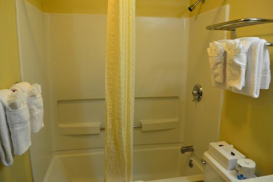 Econo Lodge - Ithaca: Guest Bathroom