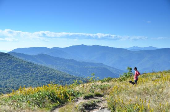 Take in the fresh air at black balsam knob picture of jackson jackson county nc take in the fresh air at black balsam knob publicscrutiny Image collections