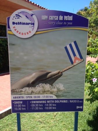 Informação sobre o Delfinário