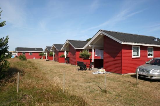 Stjerne Camping (Vejers Strand, Denemarken) - foto's en reviews - TripAdvisor