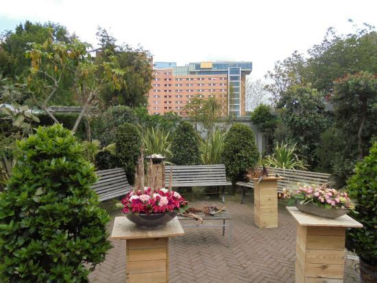 Botanische Tuin Amsterdam : Vu ziekenhuis en hortus foto van botanische tuin zuidas