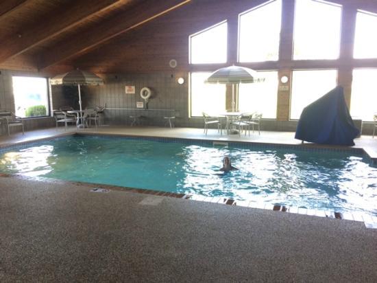 AmericInn Lodge & Suites Fergus Falls - Conference Center: Pool Area