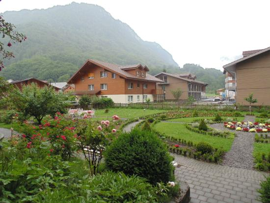Alpenrose Hotel and Gardens: View out the back of the hotel.