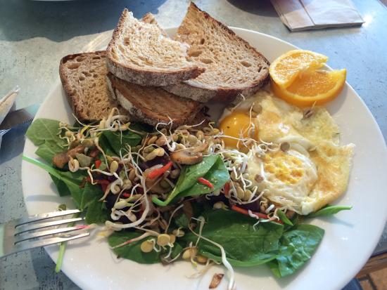 Caffe Ibis: Superb, fresh and healthy breakfast with a really nice coffee. A little gem in Logan