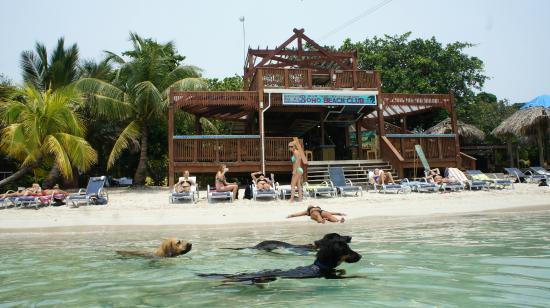 Boho Beach Club Roatan