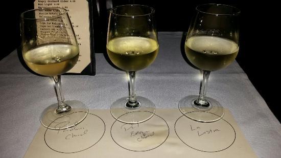Harvest Gallery Wine Bar: Flights of wine!