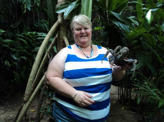 Cave Kava Bar and Coconut Crab Sanctuary: I was brave!