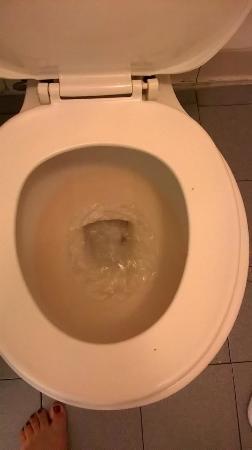Loyalty Inn Petersburg: Dirties toilet I've ever seen in a hotel