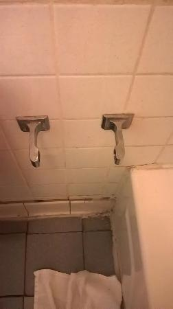 Loyalty Inn Petersburg: Really? Can't you find a toilet holder at the dollar tree store?
