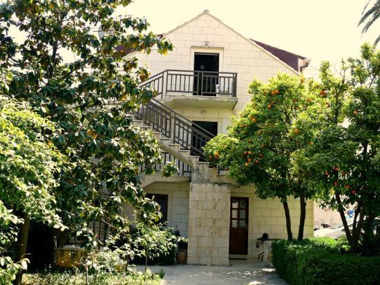 Villa Micika: vila micika surroundings