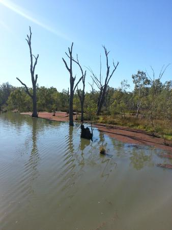 Koondrook, Australia: Gunbower Creek