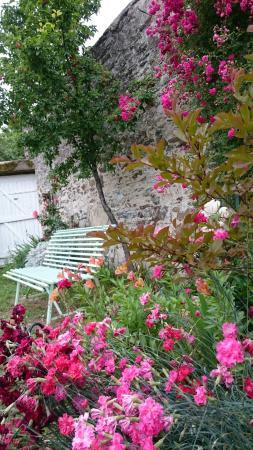 Loire-Sejours : A lovely garden