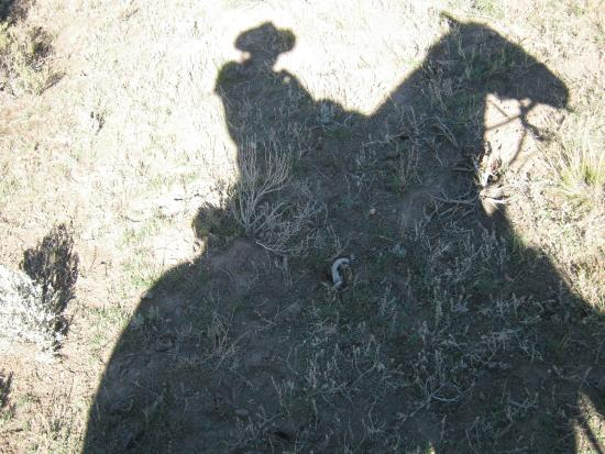 Cottonwood Guest Ranch: shadow