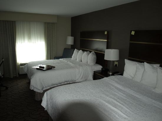Hampton Inn San Antonio Downtown (River Walk): Zimmer