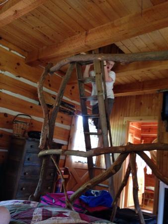 Whisperwood Farm B&B, Creekwalk Inn and Honeymoon Cabins Photo