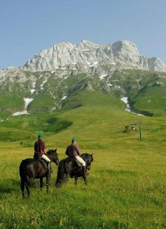 Hotel Europa: a cavallo