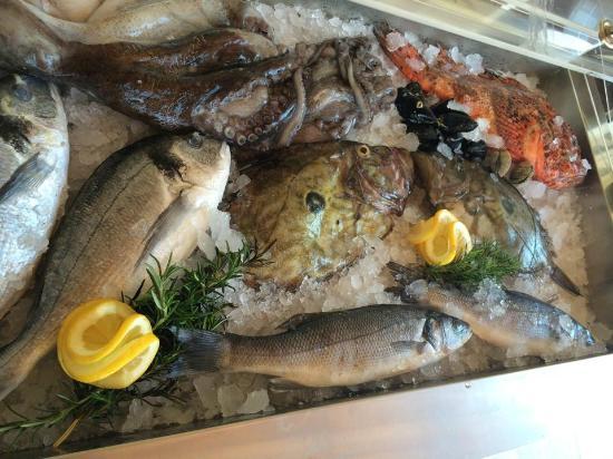 Mali Raj: fish