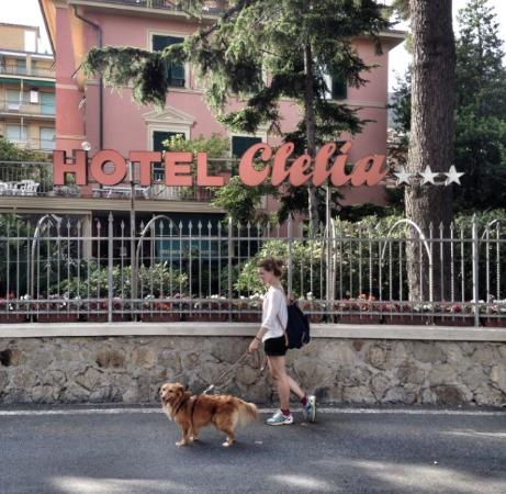 Hotel Clelia: Hotel